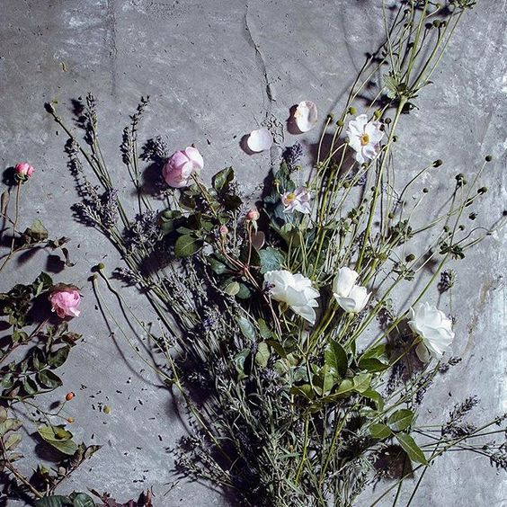 Styling foraged finds from a walk. A collection of beautiful dried flowers.