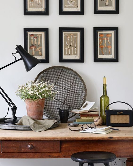Styling foraged finds. Lifestyle shot of a desk with gardening tools and plant on.