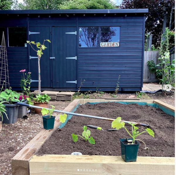 My happy place. Garden makeover featuring a vegetable patch and grey painted shed.